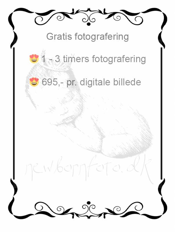 Gravid fotografering Fyn i studie, stående gravid kvinde med smuk gravid mave i silhouette , fotografering af gravid hos newbornfoto.dk