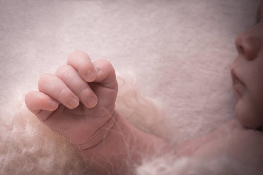 Galleri - newborn og gravid 2